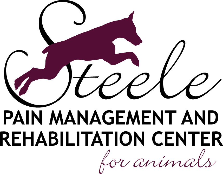 Steele Pain Management & Rehabilitation Center